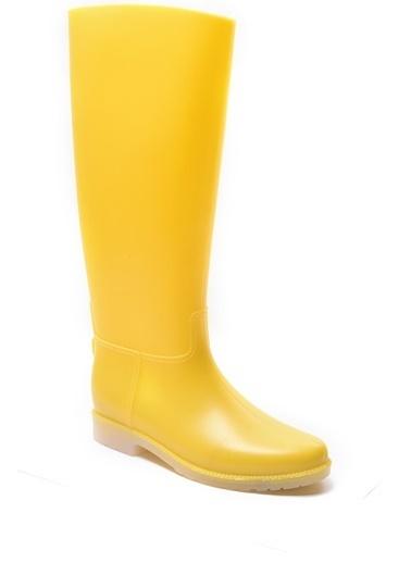 Sapin Bot Sarı